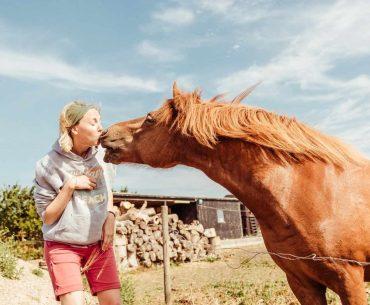 Horse kissing woman